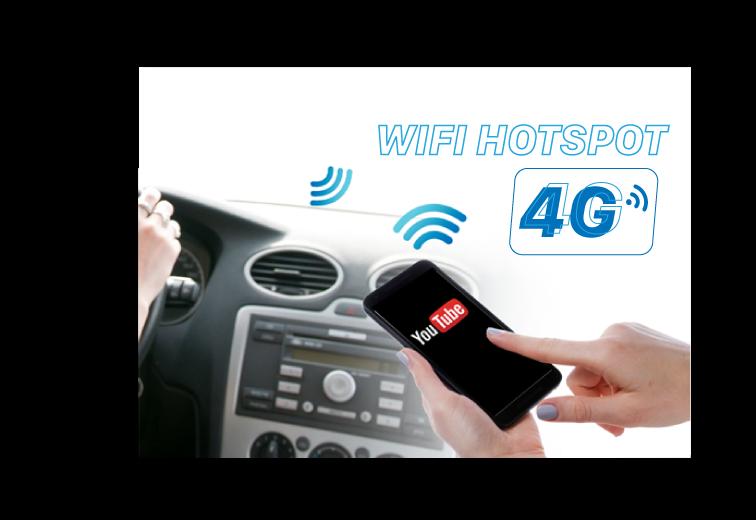 VM300 kết nối 4G